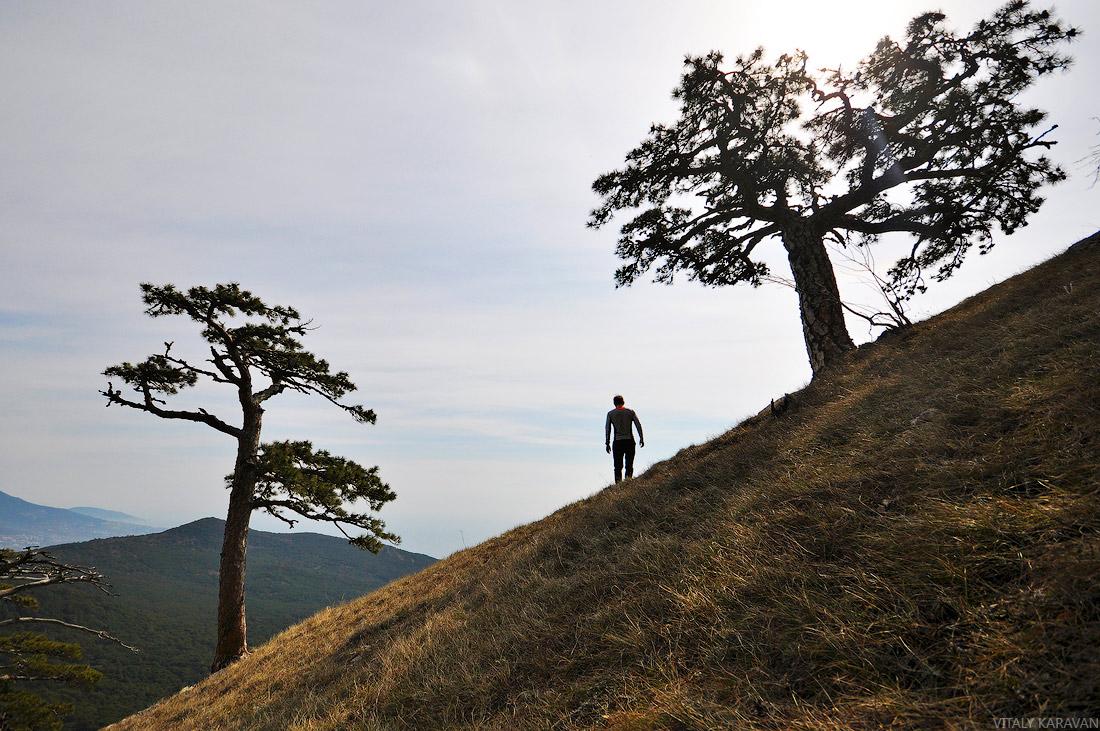 На гору Ай-петри пешком фото крым ялта