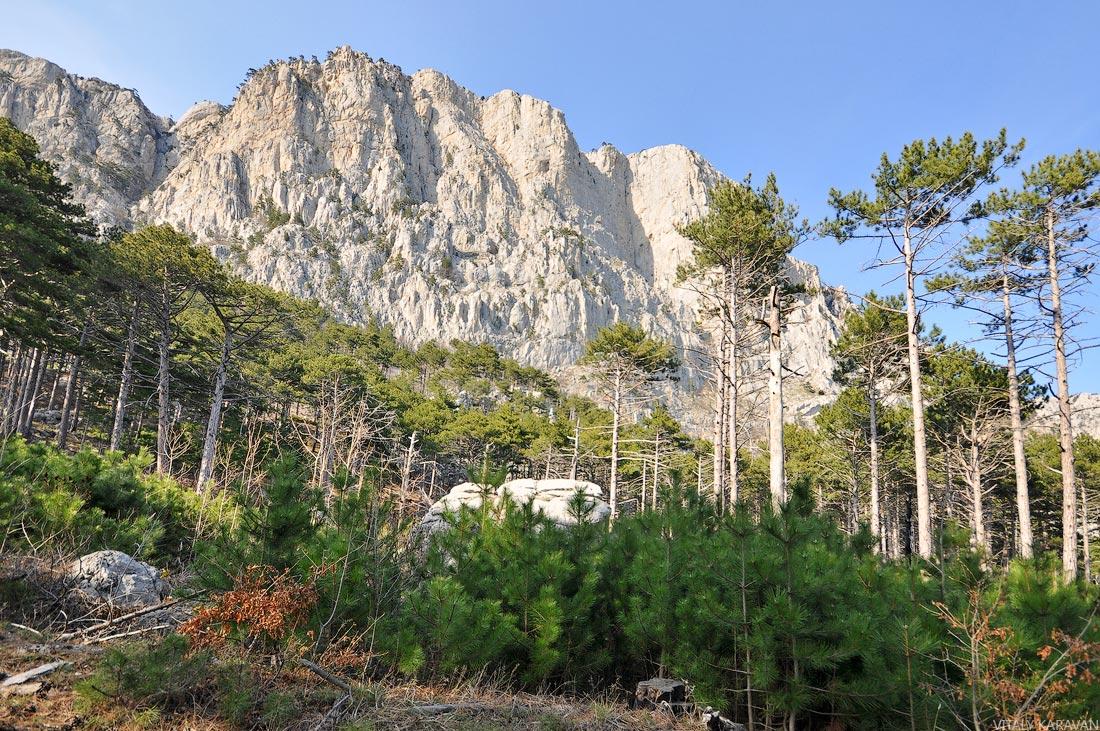 гора Ай-Петри пешком по тропам ялтинского заповедника
