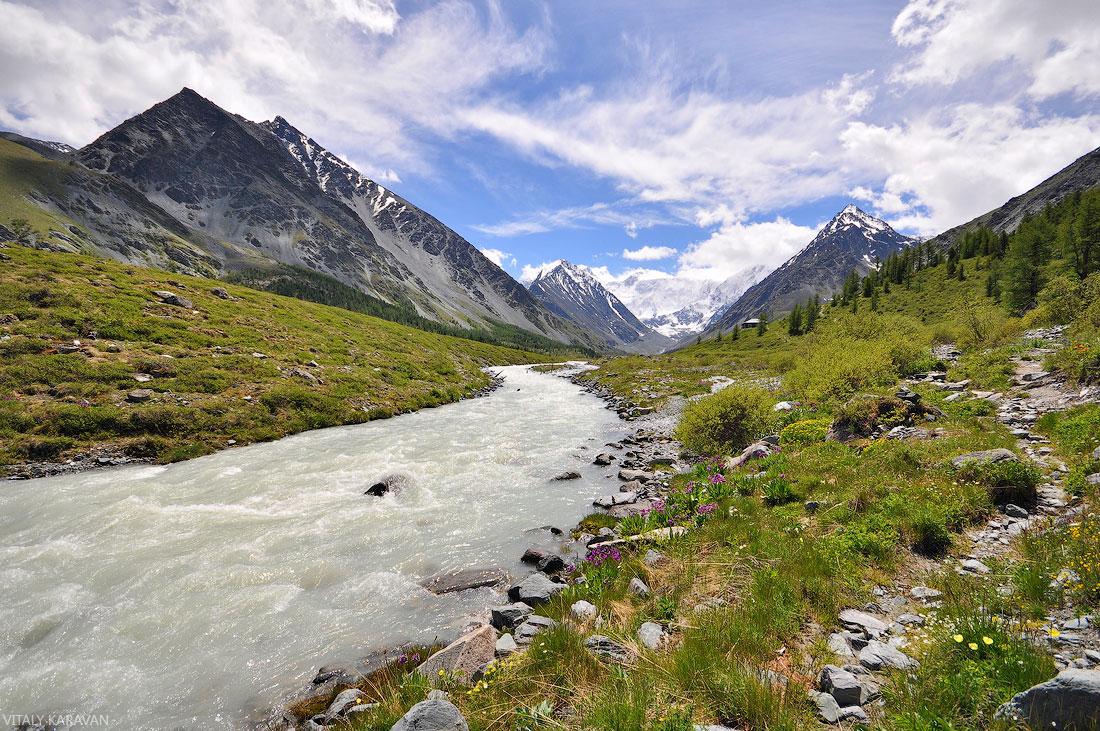 Алтай река Аккем июнь подножие Белухи красивое фото