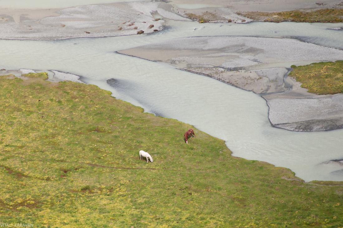 лошади пасутся в долине реки Аккем Алтай