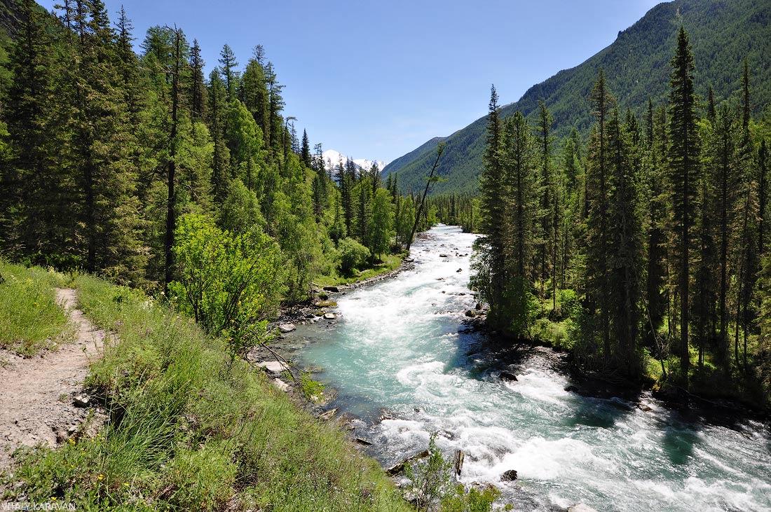 Тропа вдоль реки Кучерла Горный Алтай