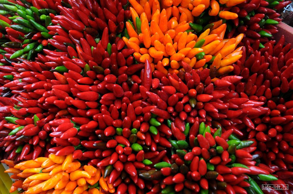 Красный Перец красивое фото на рынке Венеции
