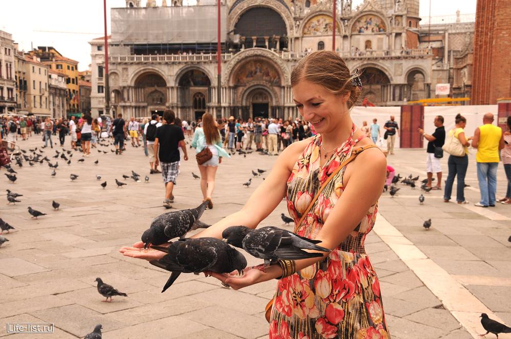 Венеция на площади Сан Марко голуби садятся на руки Италия