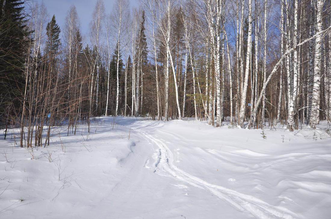 тропа Веселые горы зимой