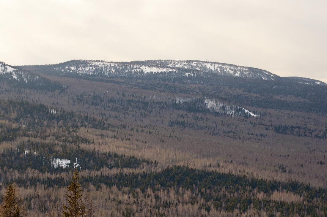 гора Белая Веселые горы Средний Урал