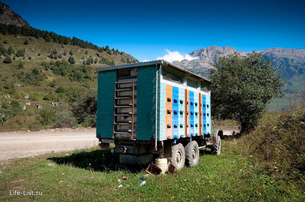 Автомобиль с ульями так заготавливают мед в Ингушетии