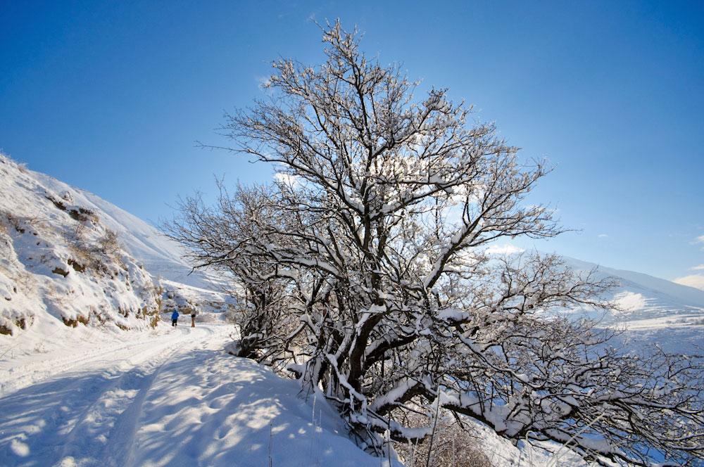 Ингушетия пейзаж горный кавказ