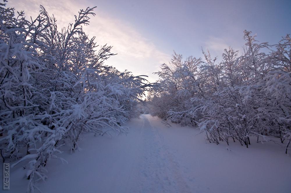 Уральская природа на горе Качканар