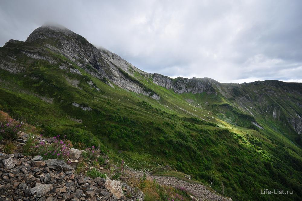 Склон горного массива Аибга. Альпийские луга.