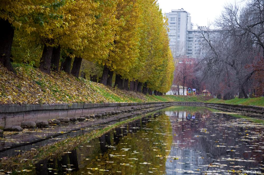В парке Красная Пресня желтые листья пруд