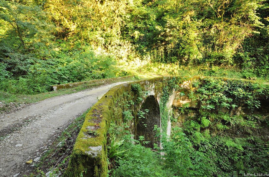 Дорога в зеленом каньоне каменный мост Абхазия красивое фото