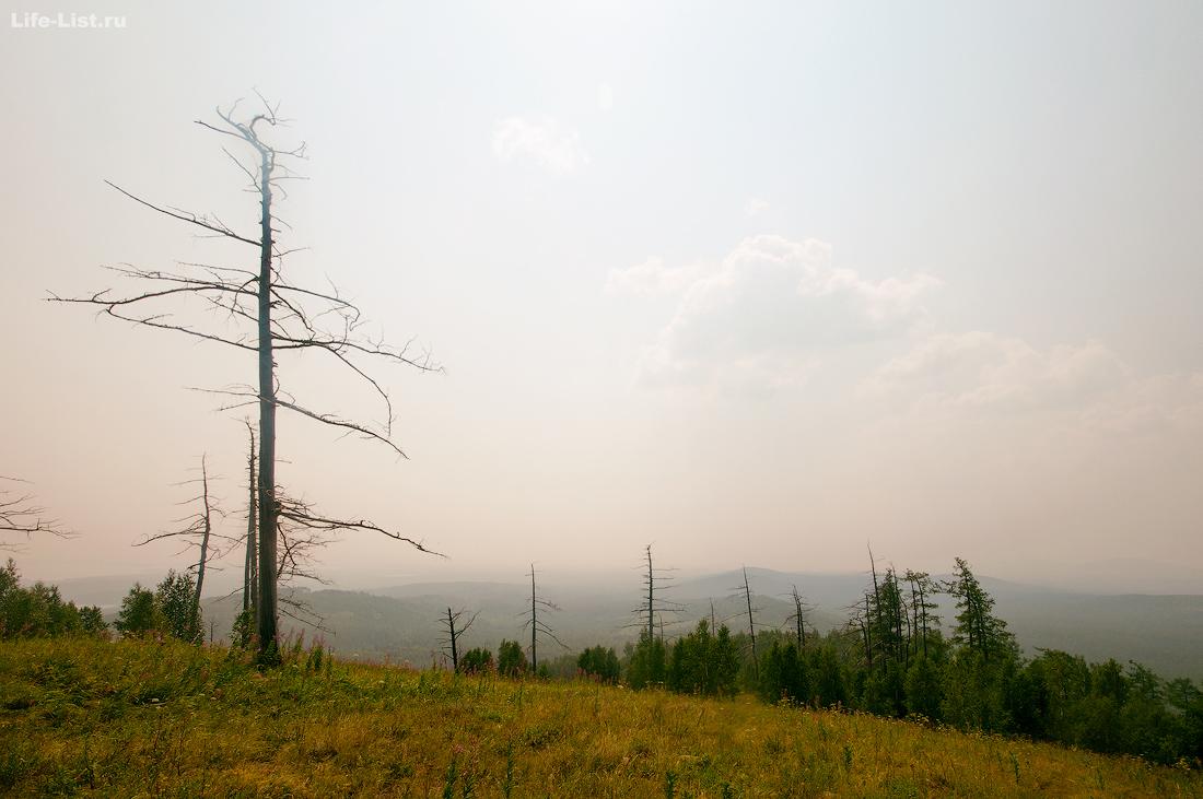 горы Южного Урала Потанина гора
