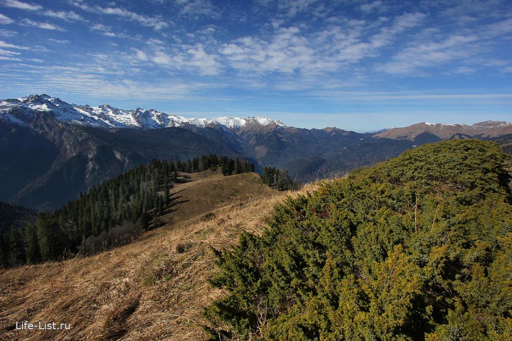 гора Пшегишхва поход в Абхазии от Рицы