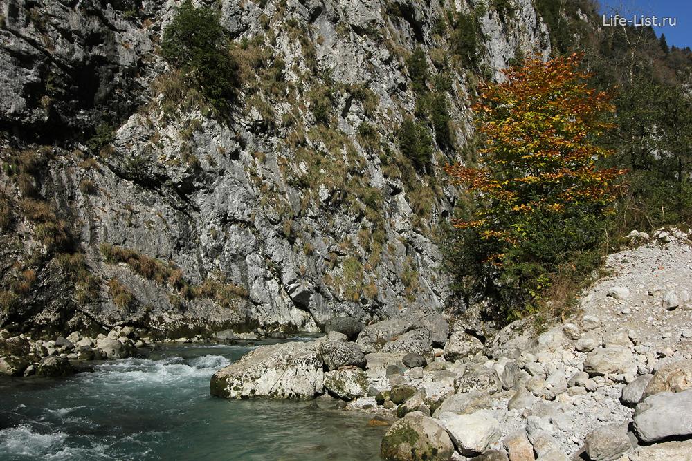 горная река ущелье Рица абхазия