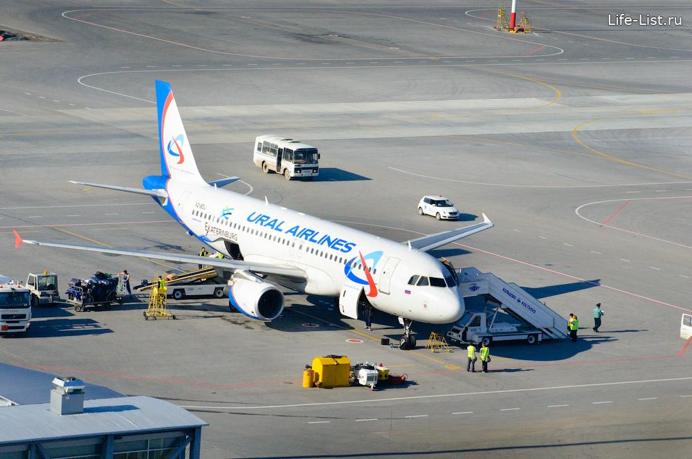 самолет Уральские авиалинии вид сверху