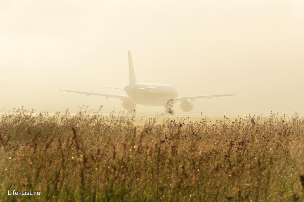 самолет в лучах солнца красивое фото