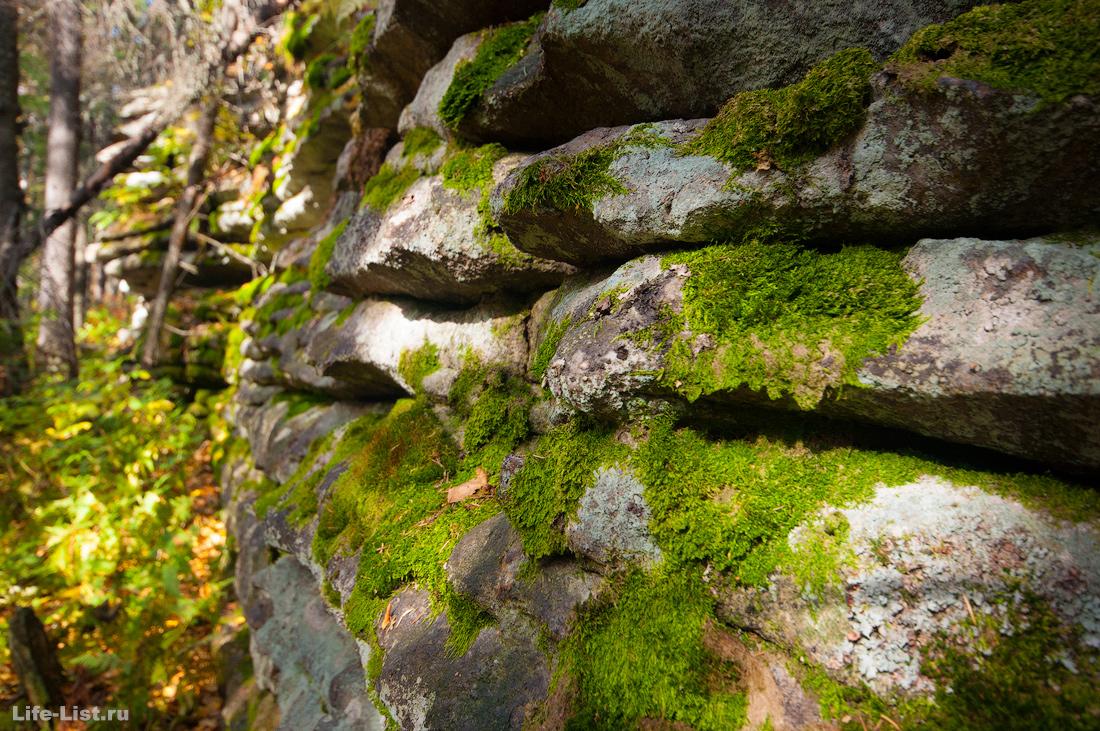 Мох на скалах Три Брата Южный Урал Красивые фото Таганай