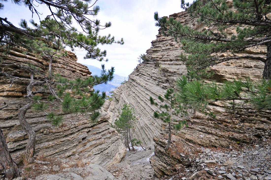 скалы Таракташ Крым Ялта фото