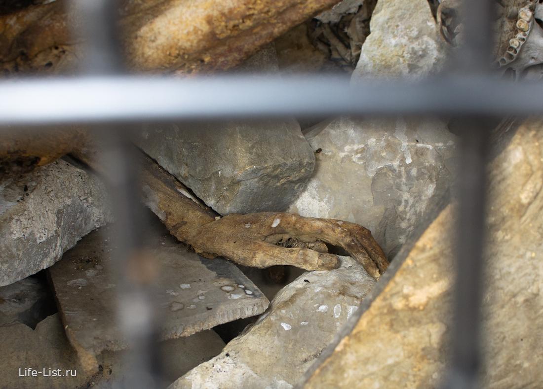 могильник в цори с человеческими костями Ингушетия
