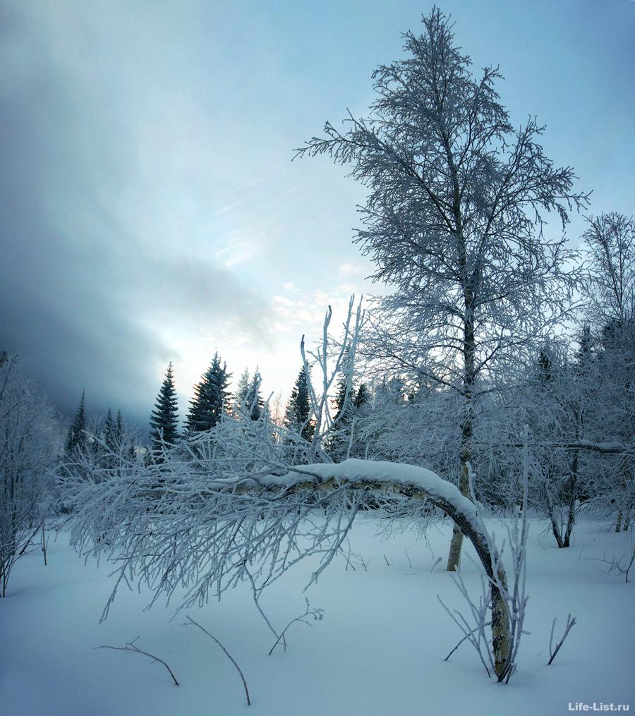 Уральская природа зимой хребет Уреньга Южный урал фото