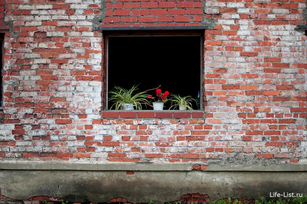 уфалейский завод металлоизделий окна цветы