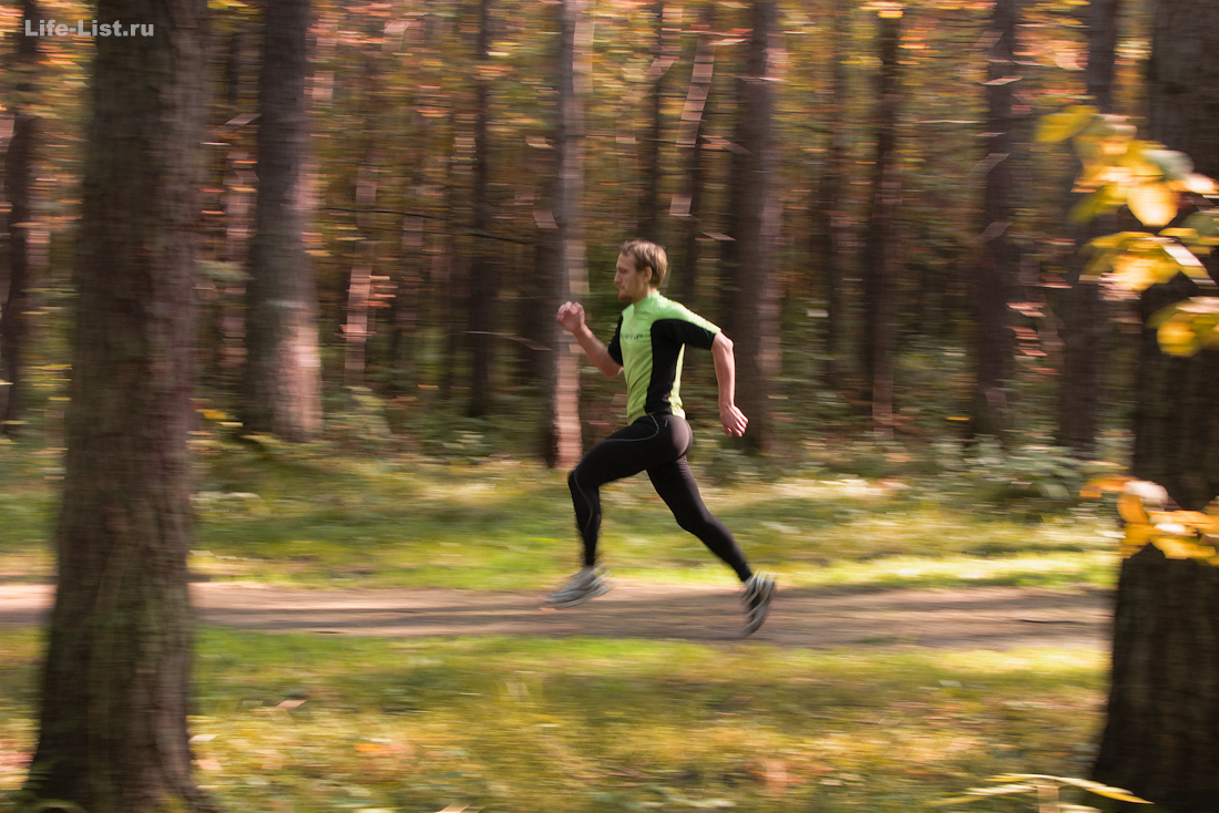 бег в лесу красивое фото