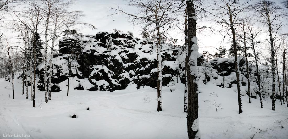 фото Урал дыроватый камень