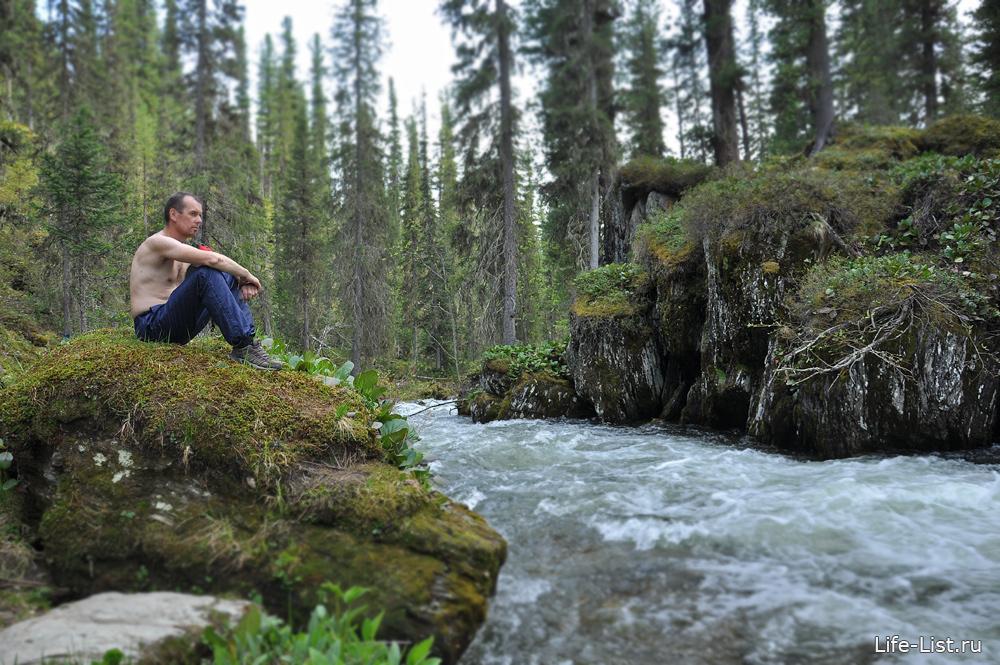 Привал горная река тушканчик фото