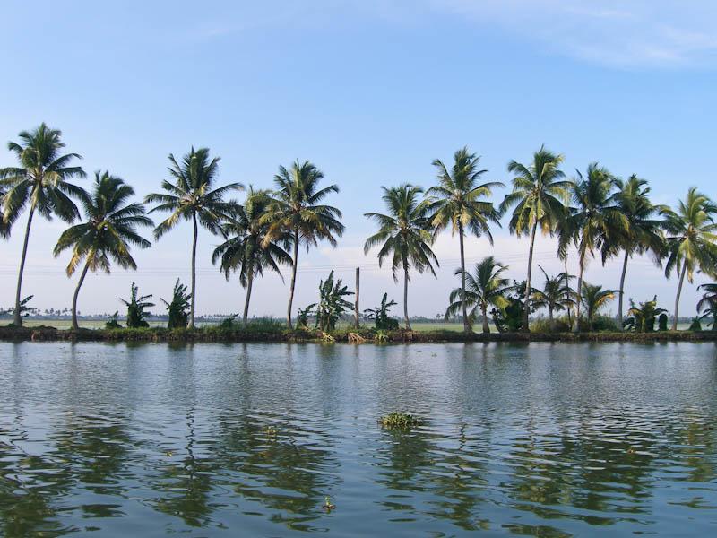 Каналы в Индии