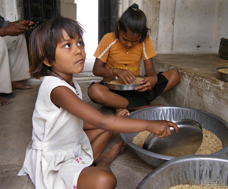 Дети в индийской деревне