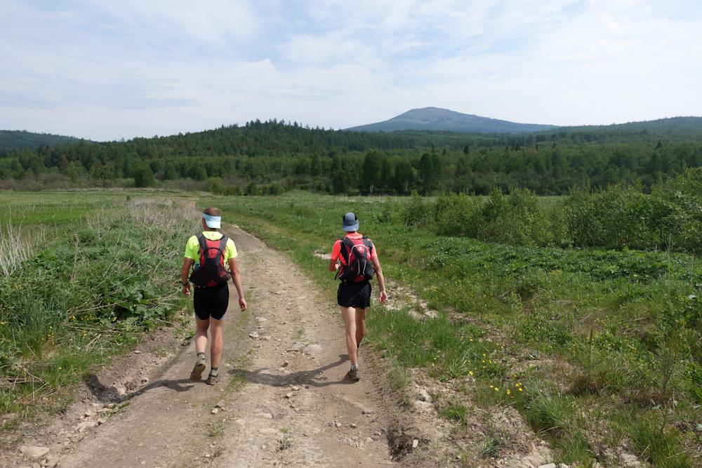 Беговая многодневка по Южному Уралу 2016 лесная дорога около Уреньги
