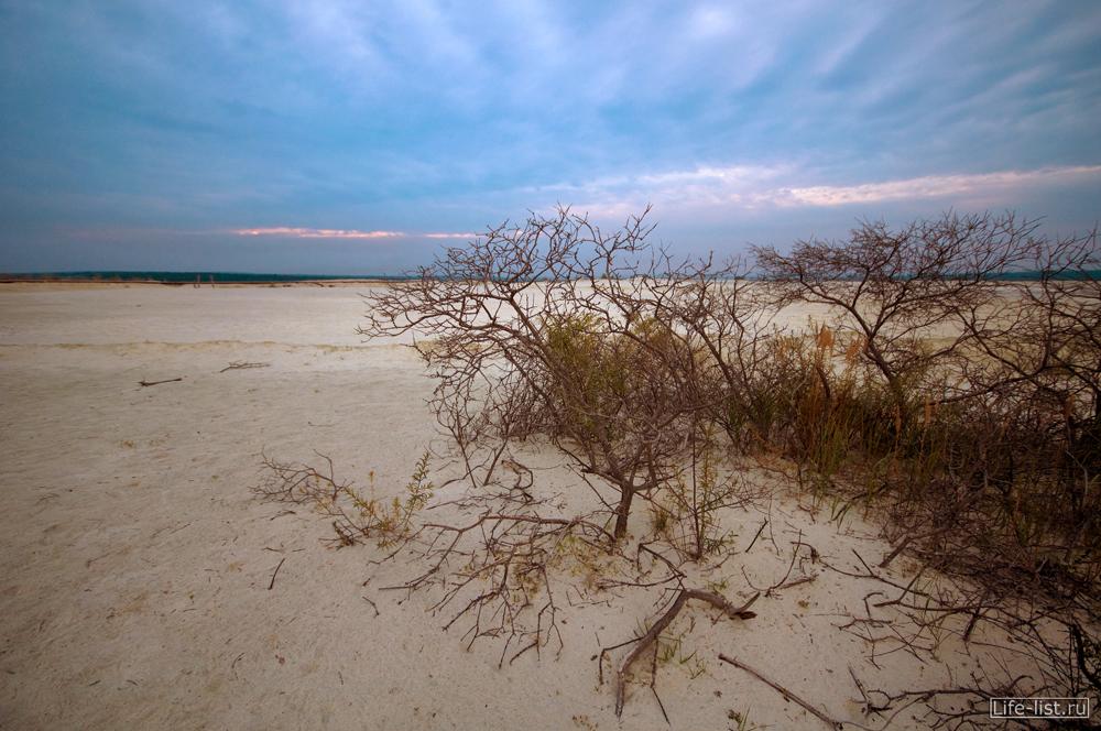 Березовские пески фото