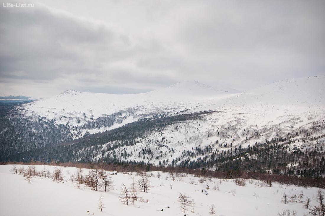 Лес в долине массива Серебрянский Камень