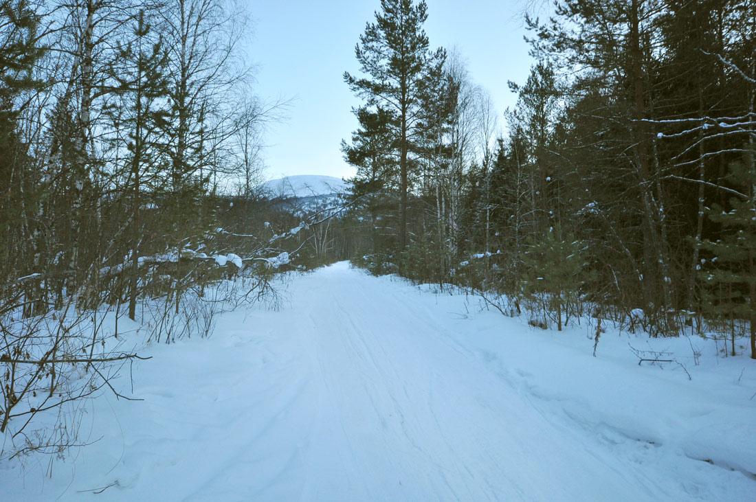 Автомобильная грунтовая дорога до Верхнего Шелома
