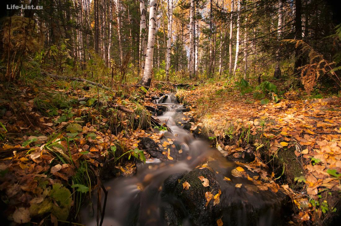 Лесной ручей Южный Урал Красивые фото Таганай