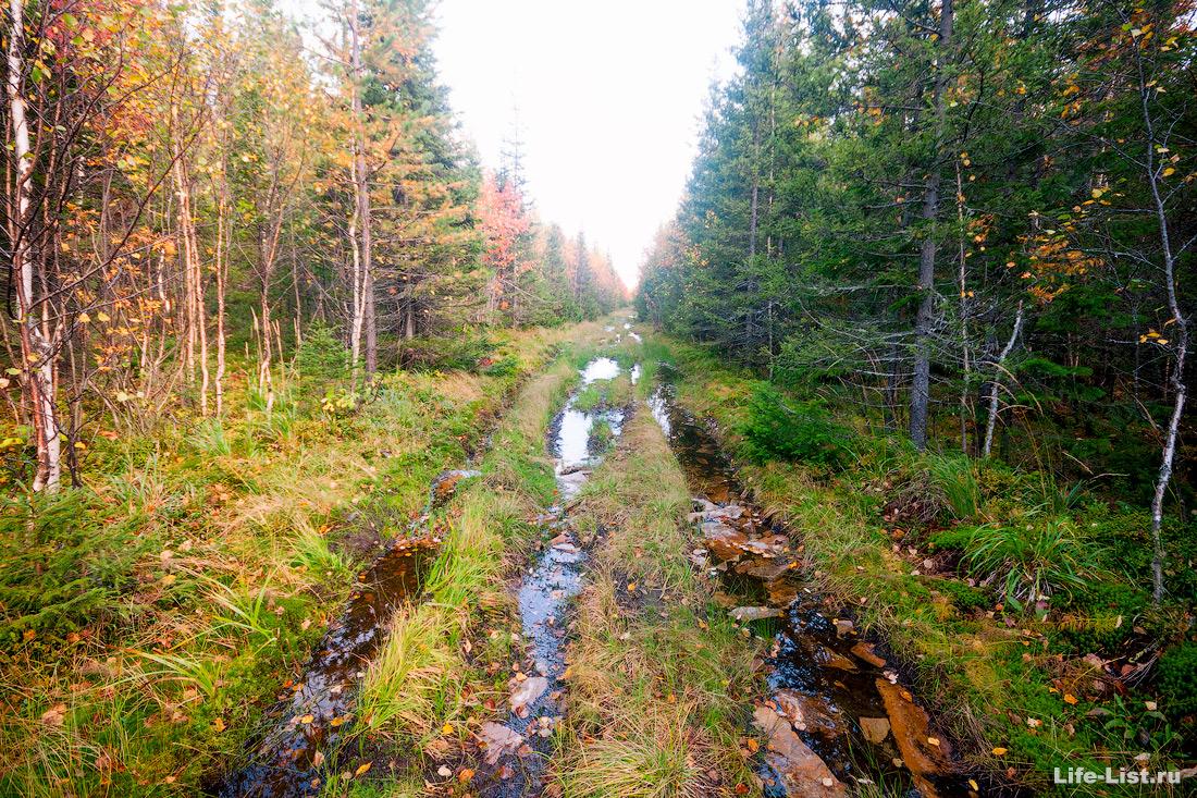 старая киалимская дорога осенью Таганай Южный Урал