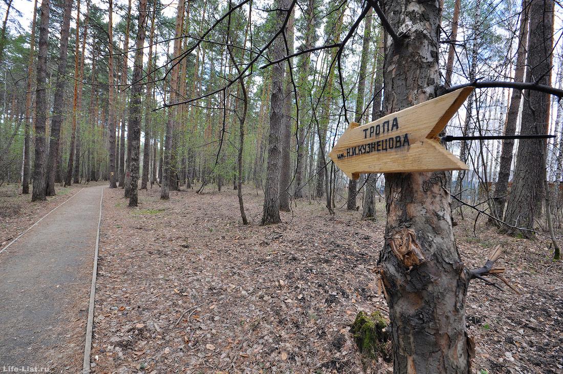 пешеходная тропа Кузнецова в Екатеринбурге в парке Победы