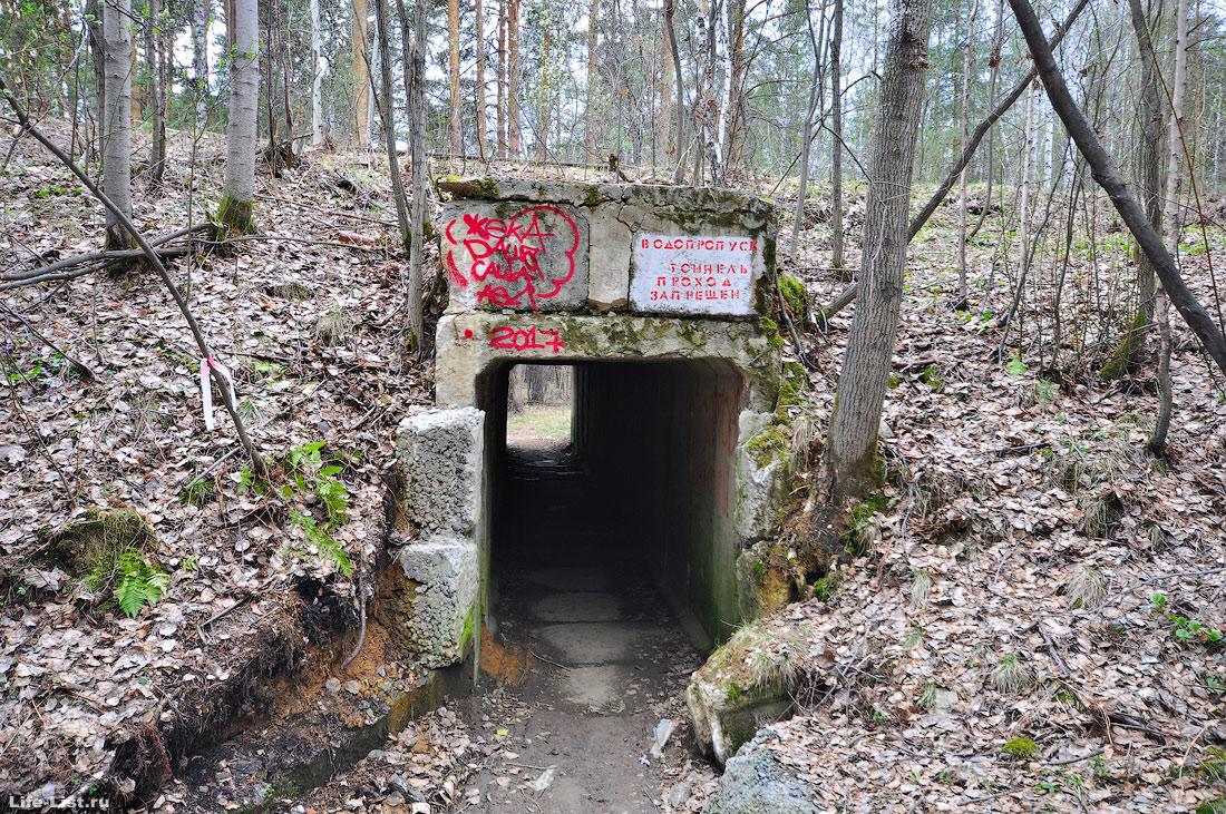Пешеходный туннель тропа Кузнецова в парке Победы