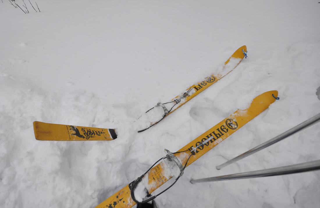 сломанная лыжа лесные деревянные